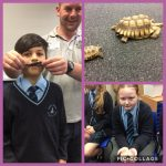 Y6 studying evolution
